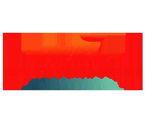 logo_nsi_vertic2-min