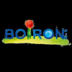 logo boiron_quadri_hd copie